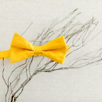 Fliege aus Seide für die Hochzeit